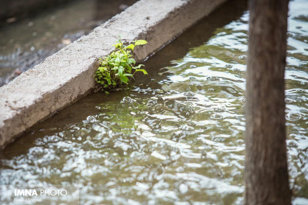 بارندگیهای اخیر تنش آبی ۱۰۰ شهر را برطرف کرد