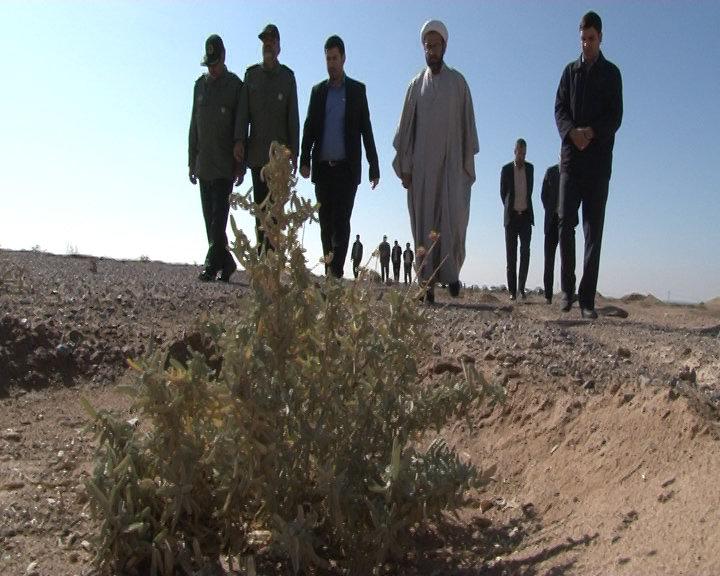 جنگل دست کاشت یکصد هکتاری در برخوار افتتاح شد