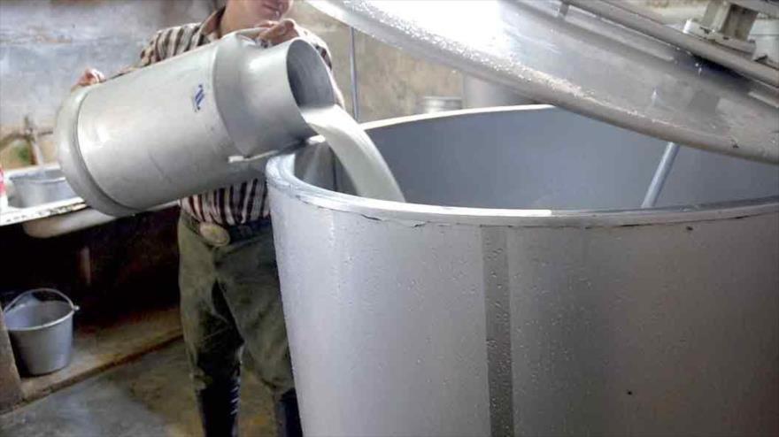 تولید شیر و فرآوردههای لبنی در ایران قابل رقابت با اروپا است