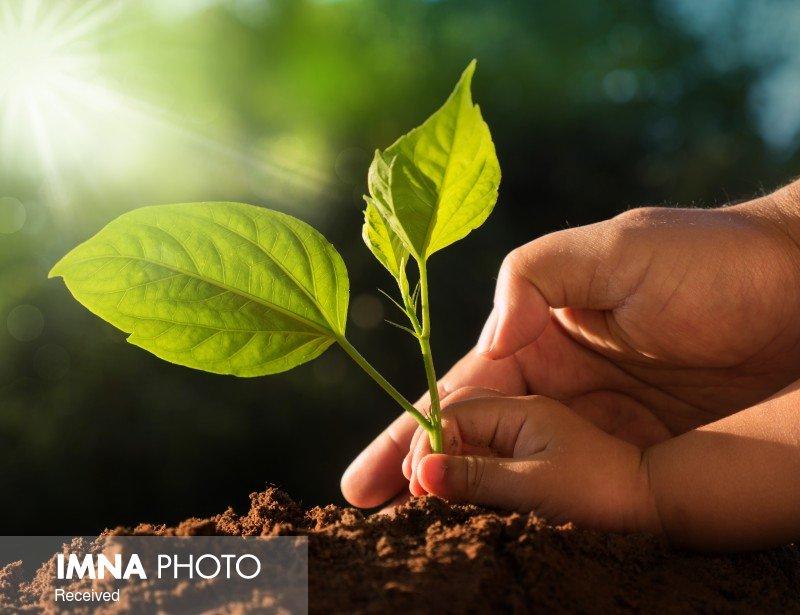 ایران سالانه ۱۶ تن در هکتار فرسایش خاک دارد