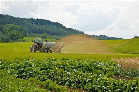 مصرف سالانه ۳۰ تا ۳۵ هزار تن سم کشاورزی در کشور