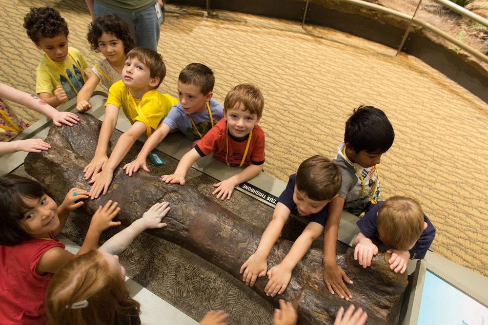 Children should participate in urban planning