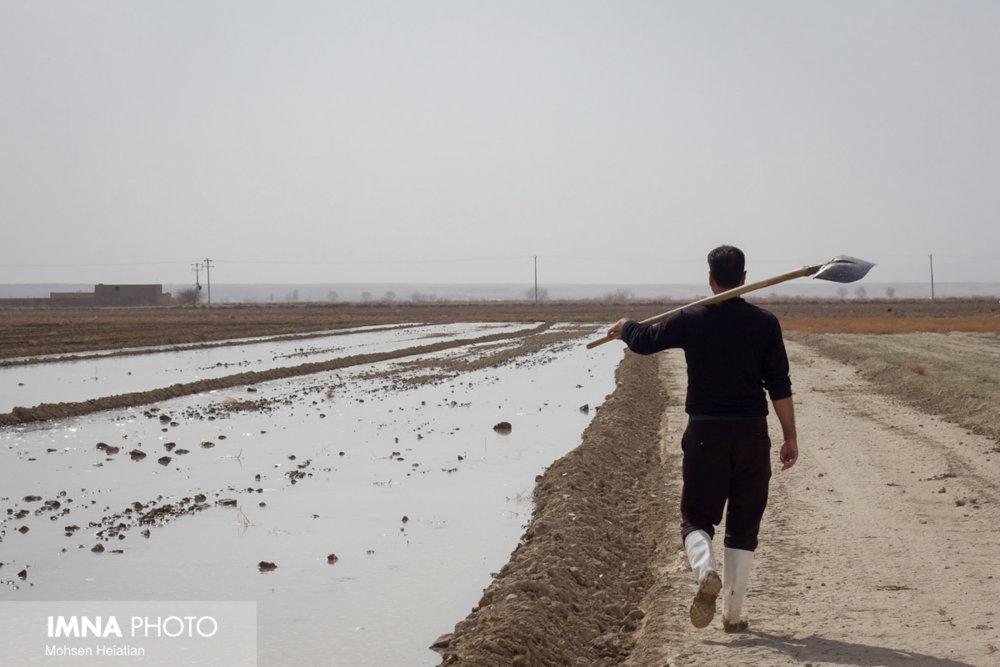 تامین آب کشت پاییزه کشاورزان اصفهانی با روند کنونی مشکل است