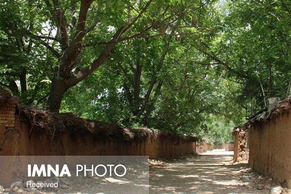 مشاغل مجاز به فعالیت در باغات شهر تهران مشخص شد