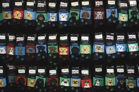 Socks for sale at an event before the 143rd Westminster Kennel Club dog show