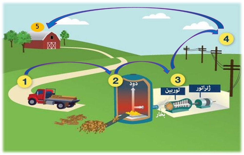 تبدیل زبالهها به انرژی همچون برق ضروری است