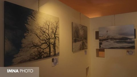 Freelance Photographers Exhibition