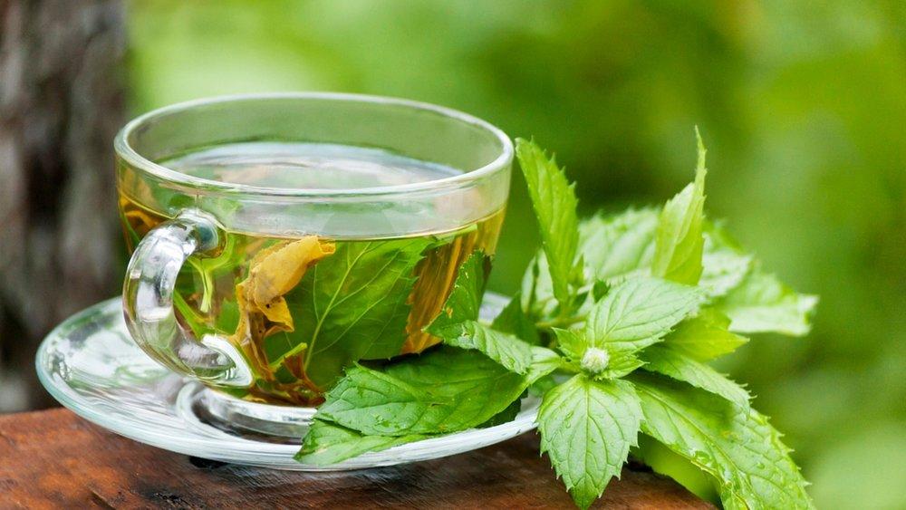 با مصرف چای سبز باکتریهای مقاوم را از بین ببرید