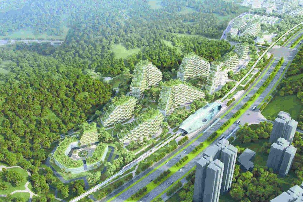 نخستین شهر جنگلی جهان طراحی شهری را به چالش میکشد