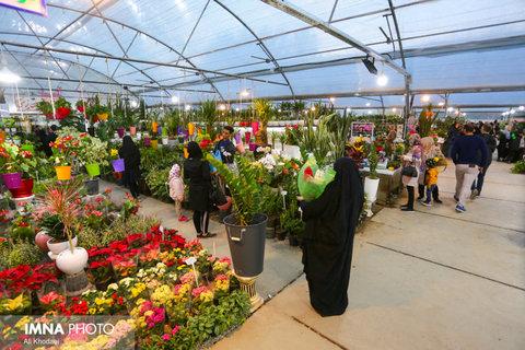 فعالیت بازار گل و گیاه همدانیان با رعایت کامل دستورالعملهای بهداشتی