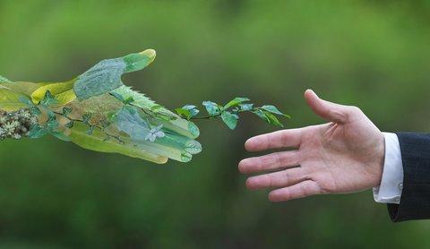 برترین کشورهای سازگار با محیط زیست معرفی شد