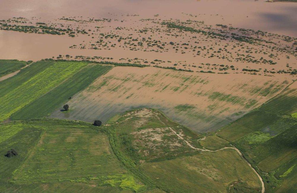 زندی: در استان همجوار کشاورزان به راحتی محصول کشت میکنند