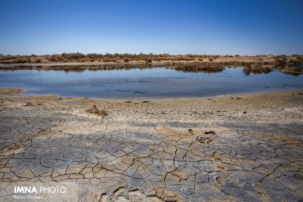 امسال ۶۰ میلیون مترمکعب آب به تالاب گاوخونی اختصاص یافته است