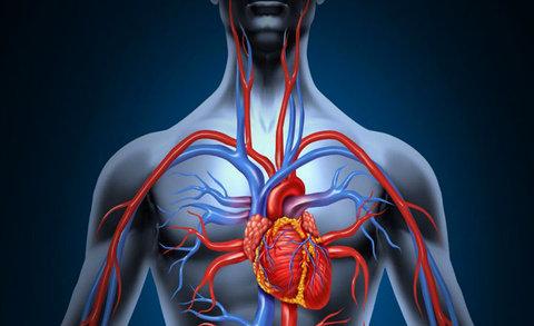 افزایش خطر ایجاد لختههای خون با نشستن طولانی