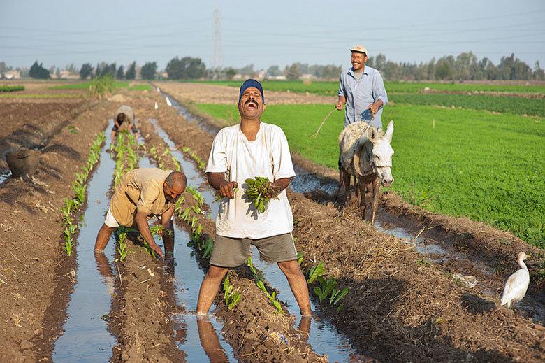 کشاورزان تاجیکستانی، خوشحالتر از همیشه!