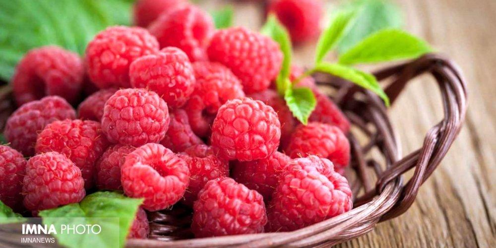 ۱۰ ماده غذایی که  برای تقویت سیستم ایمنی بدن معجزه میکند