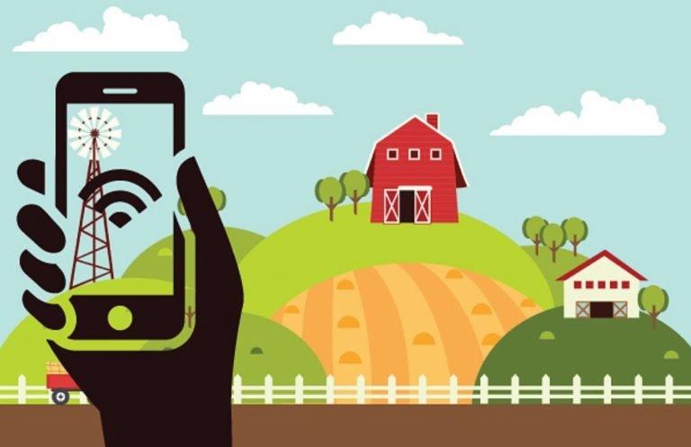 تولید دانش در بخش کشاورزی باید افزایش پیدا کند