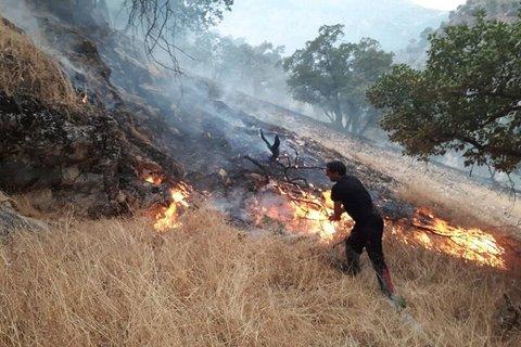 افزون بر ۷۰۰۰ هکتار از مناطق حفاظت شده محیط زیست در آتش سوخت