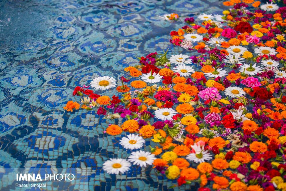 جشن روز ملی گل