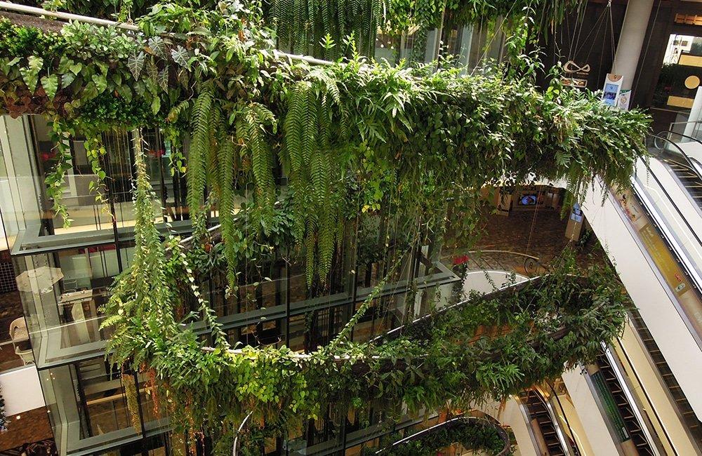 بزرگترین باغهای عمودی جهان