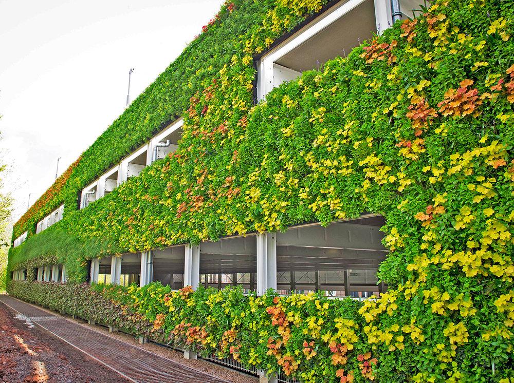 آلودهترین کشور جهان میزبان باغهای عمودی میشود