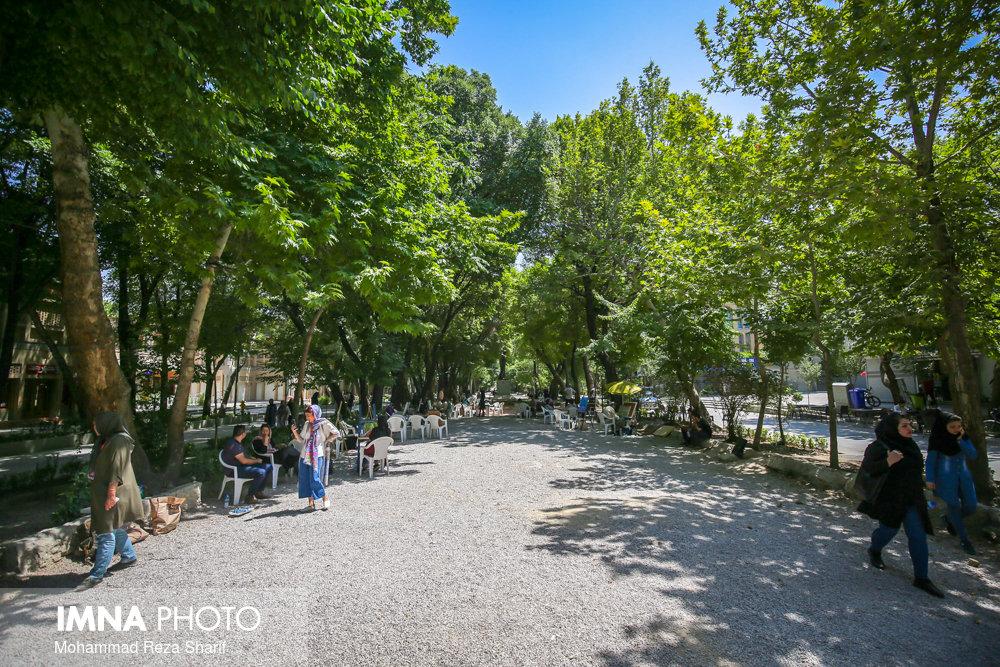 آسیبی به درختان چهارباغ وارد نشده است