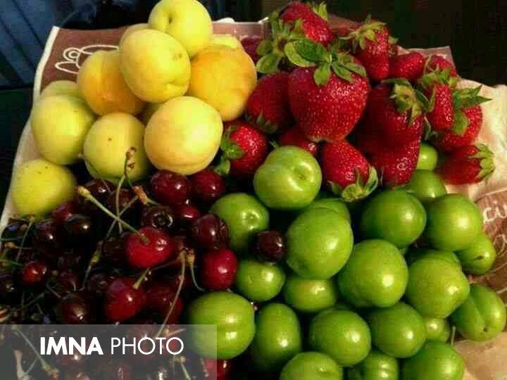 قیمت میوه و تره بار در بازارهای کوثر امروز ۲۷ اردیبهشتماه+ جدول