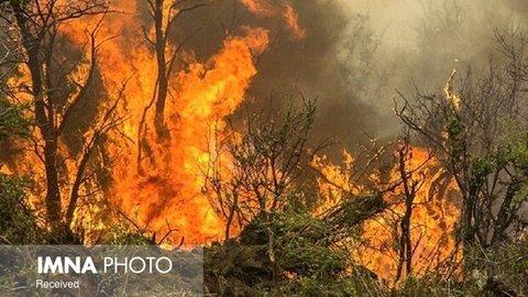 آتشسوزی در ۱۵ هکتار از مراتع فریدن