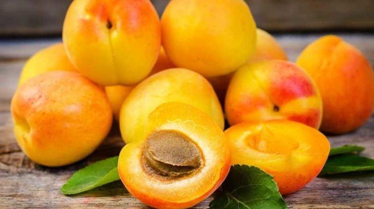 زردآلو میوه تابستانی، دشمن سرطان و بیماریهای عصبی
