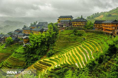 مزارع برنج Tiantouzhai در چین