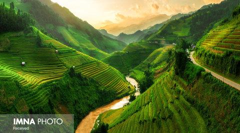 مزارع برنج Mù Cang Chải در ویتنام