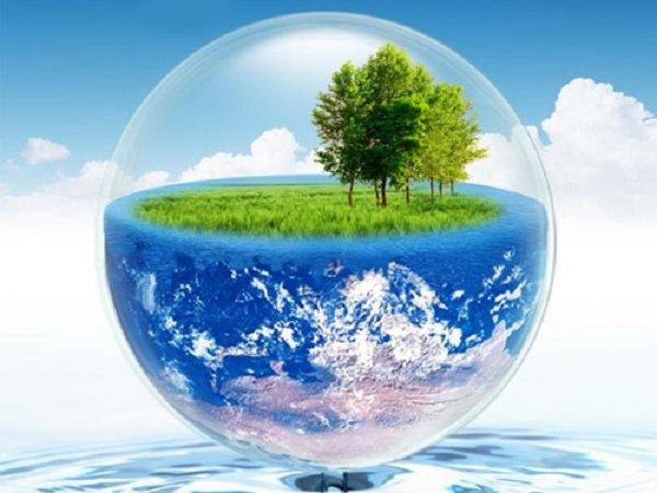 اجرای پرفورمنس برای محیط زیست