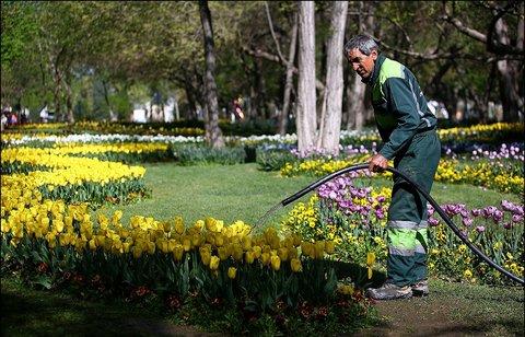 بهرهبرداری از ۲ پروژه فضای سبز مشهد تا بهمن ماه سالجاری