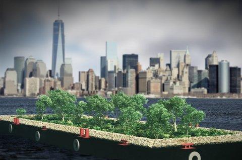 جنگلهای کوچک شهری؛ رویکردی برای شهرهای پایدار