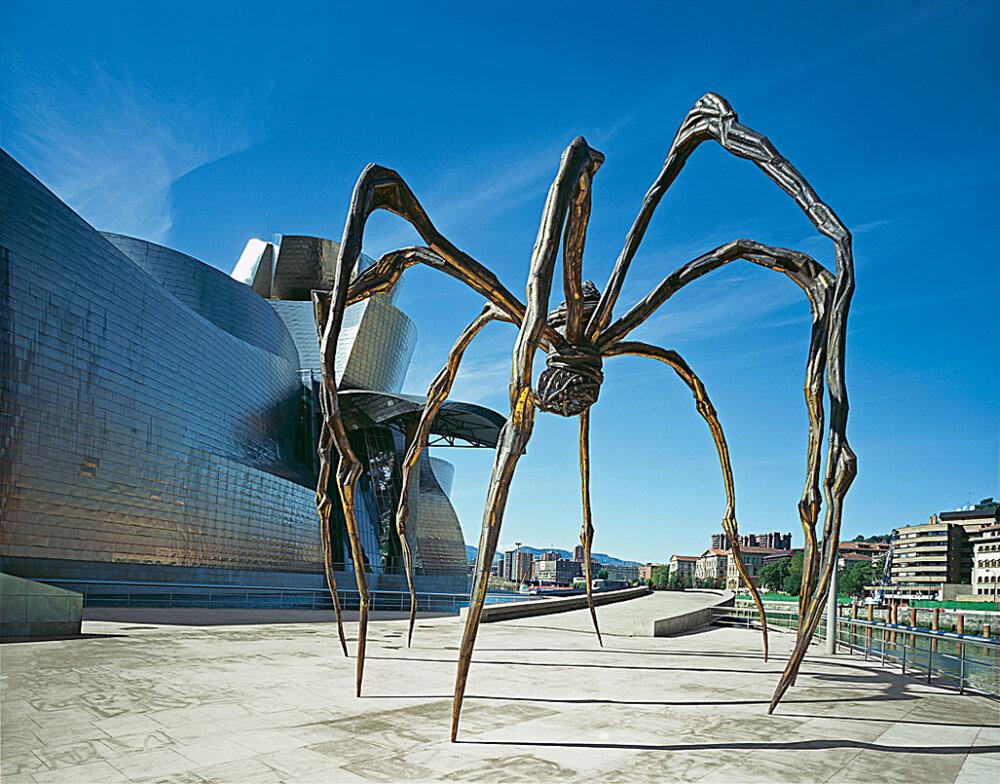 چرا عنکبوت نماد مادر شد؟