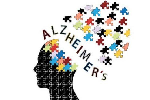 عوامل کاهش بروز آلزایمر/ خواص درمانی و تغذیه ای سیب زمینی