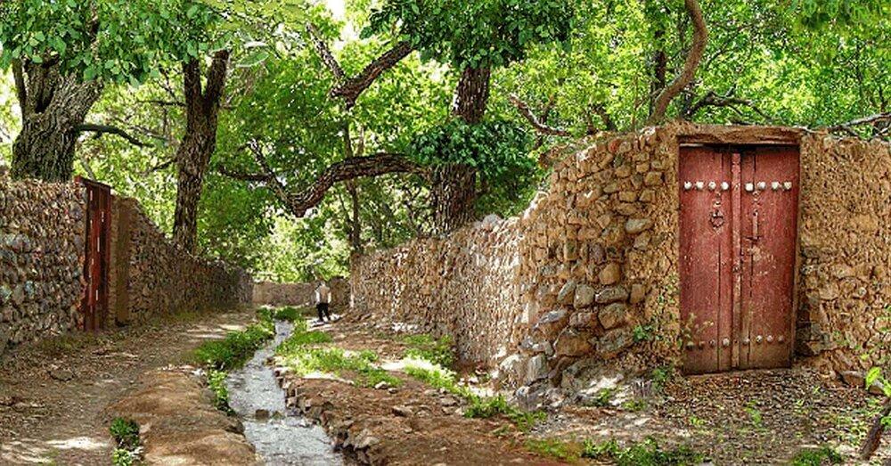 حفاظت از باغات شیراز نیازمند رویکردهای نوین است