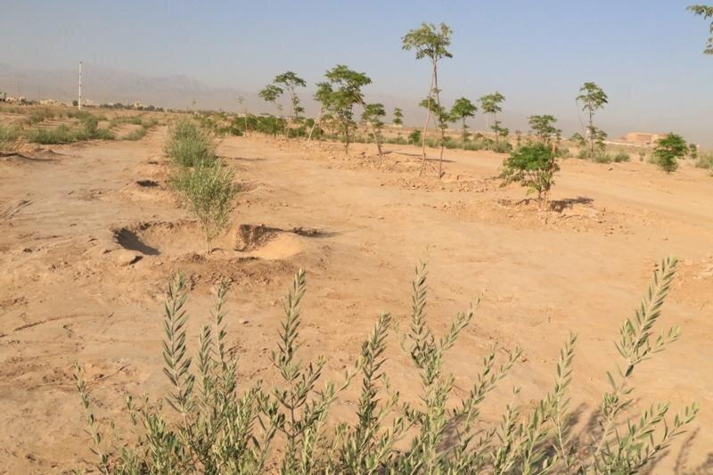 اجرای پروژه انتقال پساب، منابع آبی اکو پارک یزد را تامین میکند