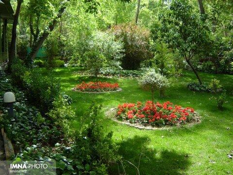 افزایش مشارکت شهروندان در حفظ فضای سبز ساری