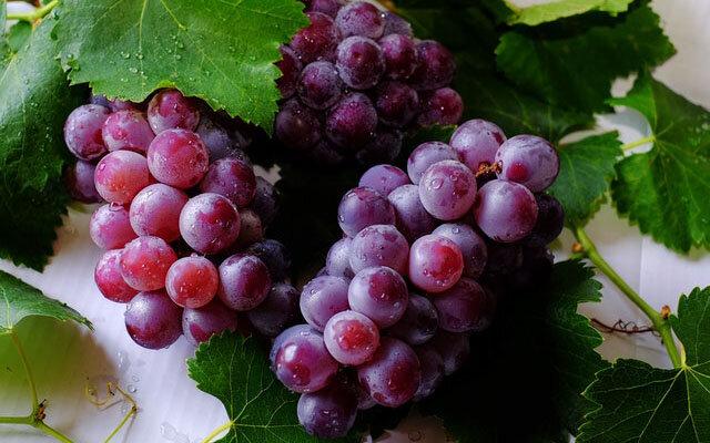 تأثیر رژیم غذایی مدیترانهای بر سلامت قلب/انگور میوه چربیسوز