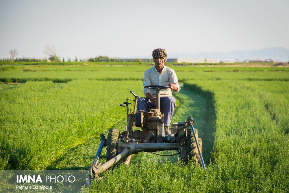 کشاورزان سمنانی برق رایگان دریافت میکنند