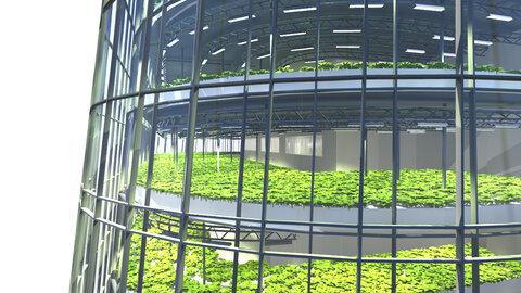 بزرگترین مزرعه شهری جهان در سوئد