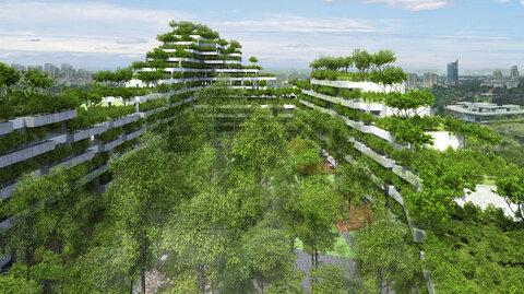 احداث جنگل شهری در دانشگاه ویتنامی