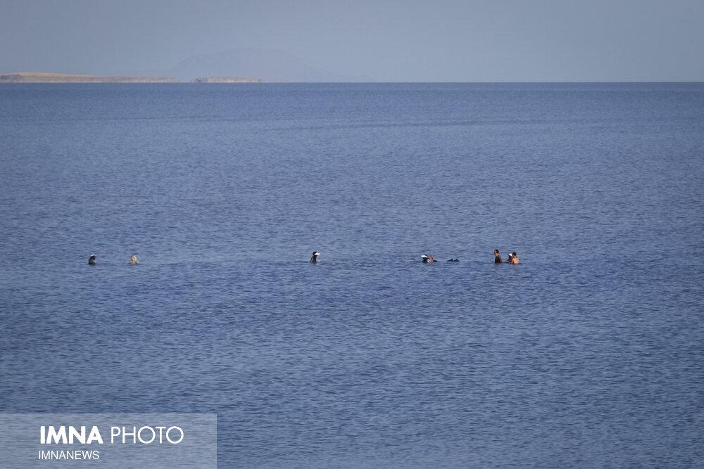 حقابه دریاچه ارومیه دوباره از آبان امسال اختصاص مییابد