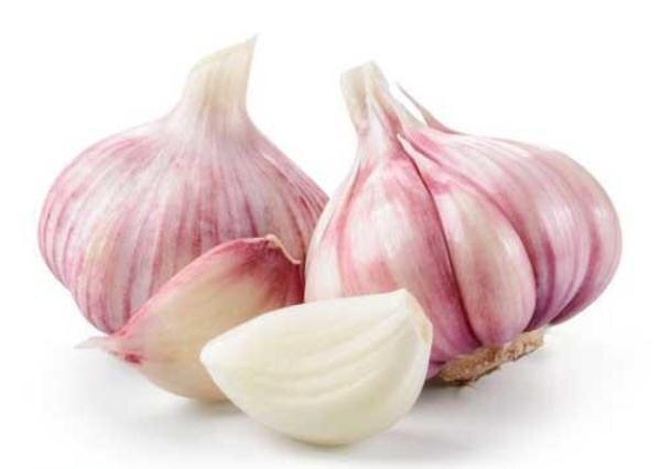 تاثیر سیر در درمان سرما خوردگی/خطر گیاهخواری برای سلامت استخوانها