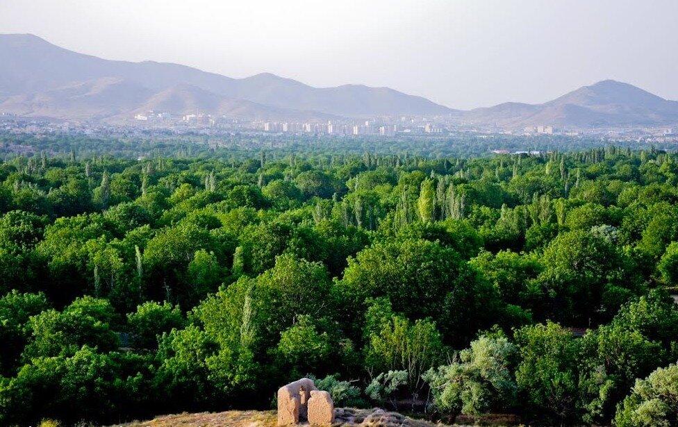 کاشت ۴۰۰ هزار درخت در فضای تفرجگاهی باغستان کرج