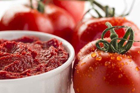 تمدید مهلت صادرات رب گوجه فرنگی تا پایان دیماه