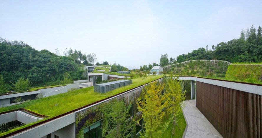 شناخت شهروندان در گسترش باغ بامها در شهر ضروری است