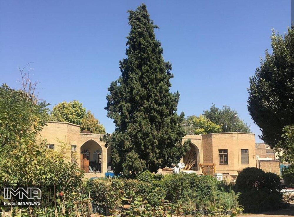 باغشهری در دامان زاگرس