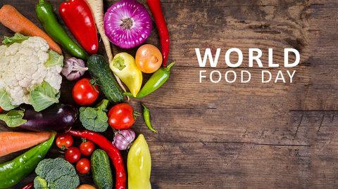 دنیای بدون گرسنگی/ شعار روز جهانی غذا ۲۰۱۹